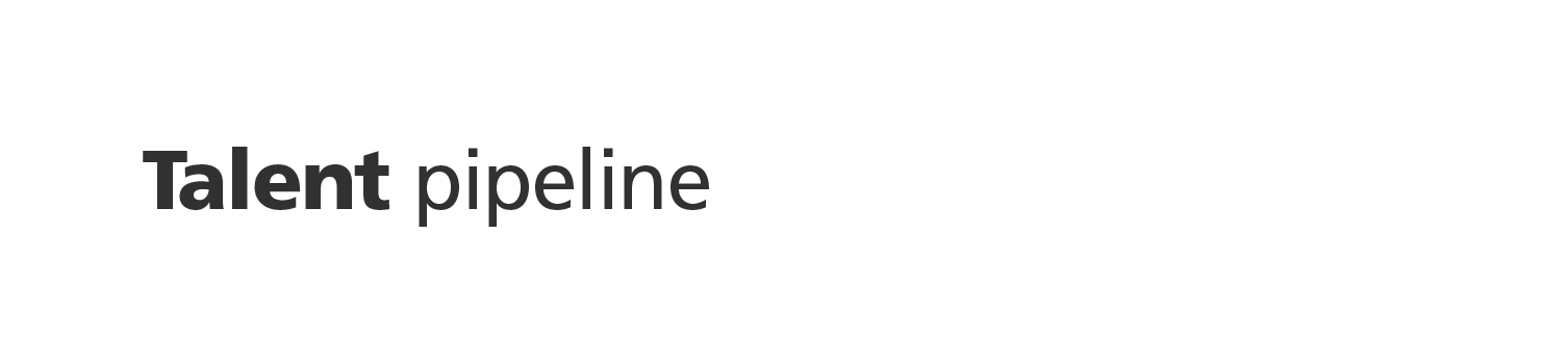 VIKING talent pipeline